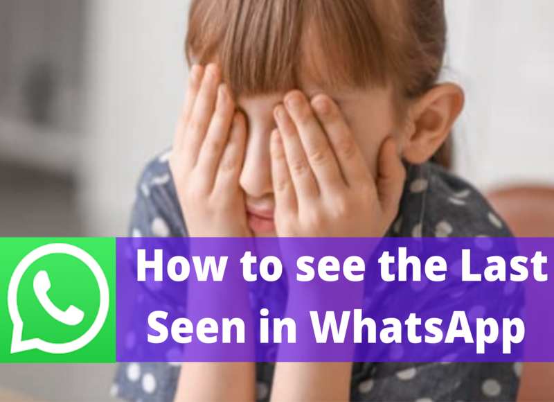 How to see the Last Seen of your friend in Whatsapp even if it's Hidden?