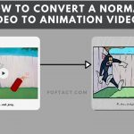 video to animation-foftact